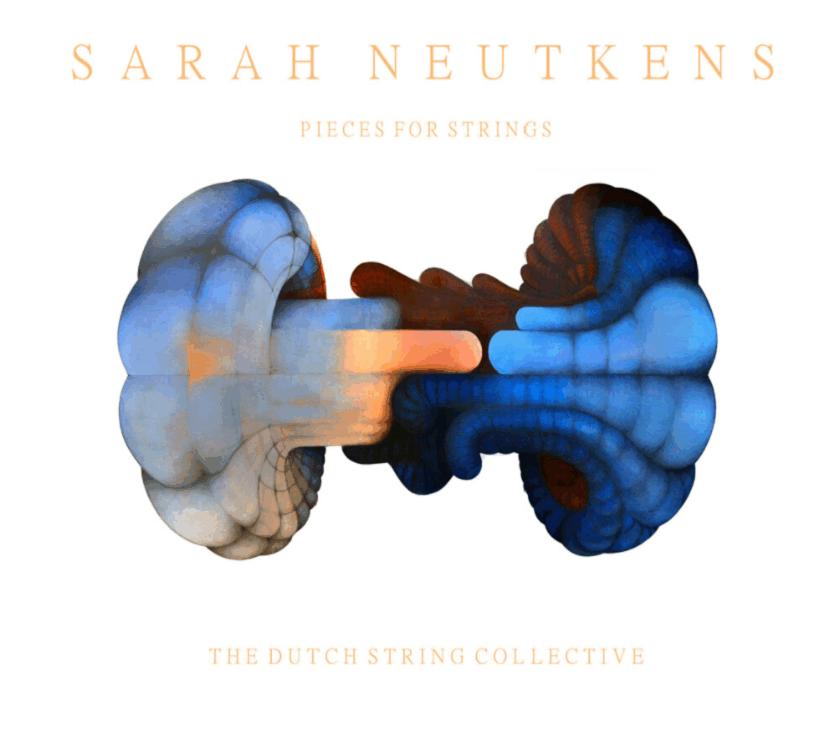 Sarah Neutkens, Pieces for Strings (2019), Artwork by Harjo Neutkens